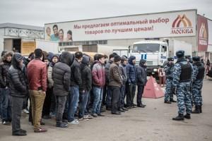мигранты 3